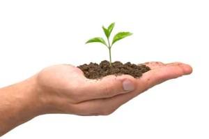 sustentabilidade01042013