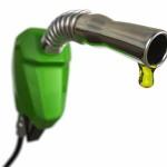sustentabilidade190220014
