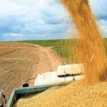 agricultura-08082014
